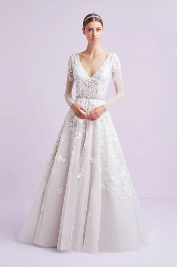 Ball Gown Mini Illustration with Lace Sleeves