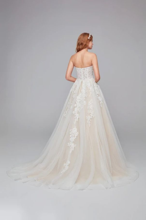 Sheer Lace and Tulle Ball Gown Back Side